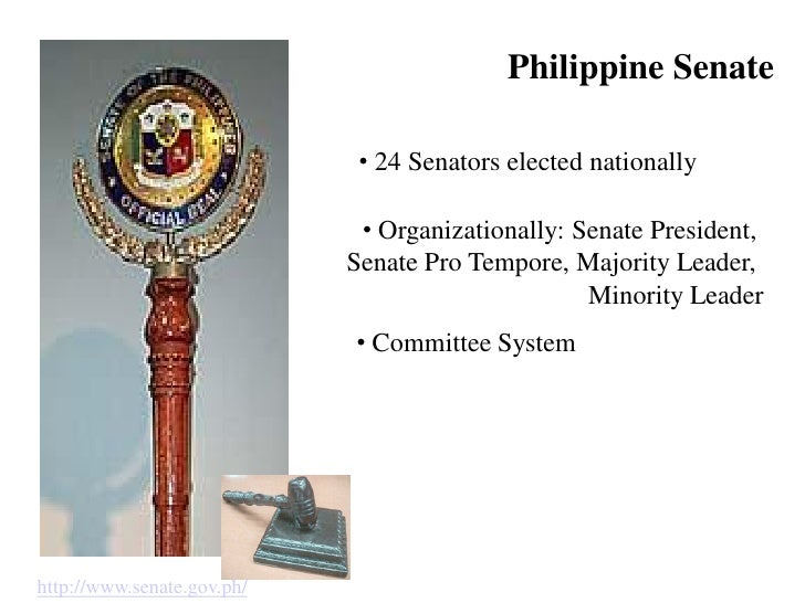 philippine politics socialization Political behavior is heavily dependent on the political system which in return shapes the political culture and socialization political culture political culture can be defined as the.