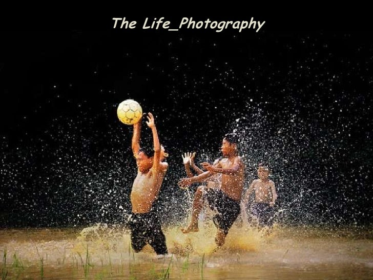 The Life_Photography<br />