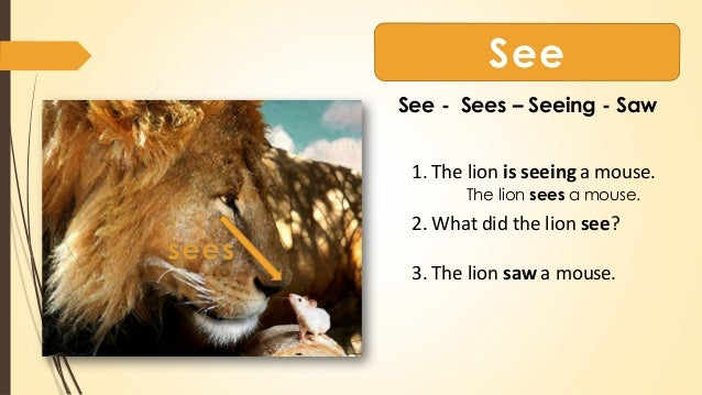 The Lion and The Mouse with Worksheets
