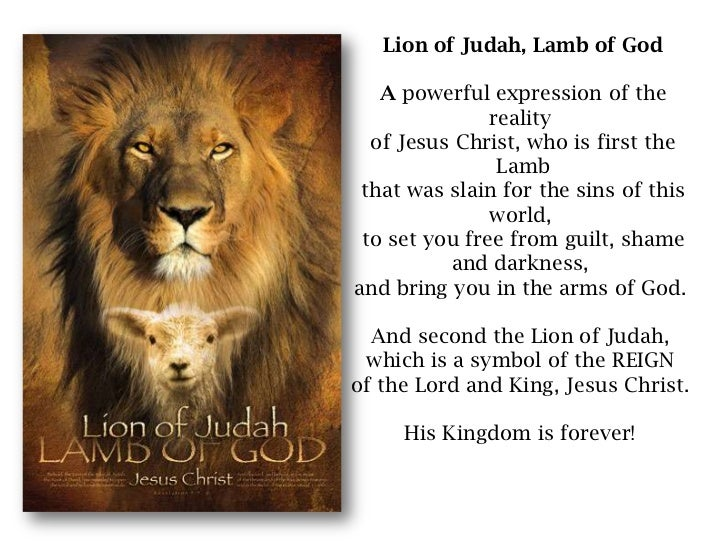 Image result for Jesus Christ lamb of God, lion of judah
