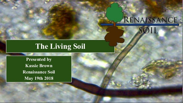 The Living Soil Presented by Kassie Brown Renaissance Soil May 19th 2018