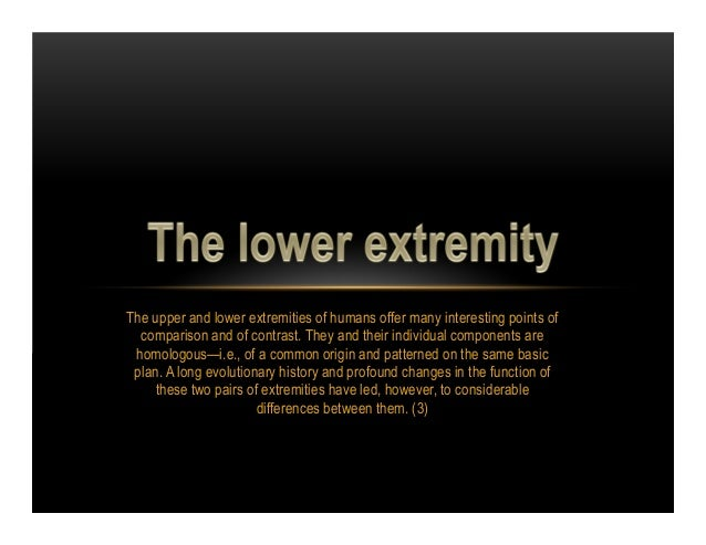 The upper and lower extremities of humans offer many interesting points of  comparison and of contrast. They and their ind...