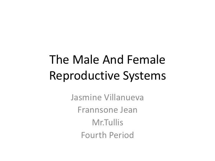 The Male And FemaleReproductive Systems   Jasmine Villanueva     Frannsone Jean        Mr.Tullis      Fourth Period
