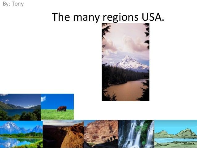 The many regions USA. By: Tony