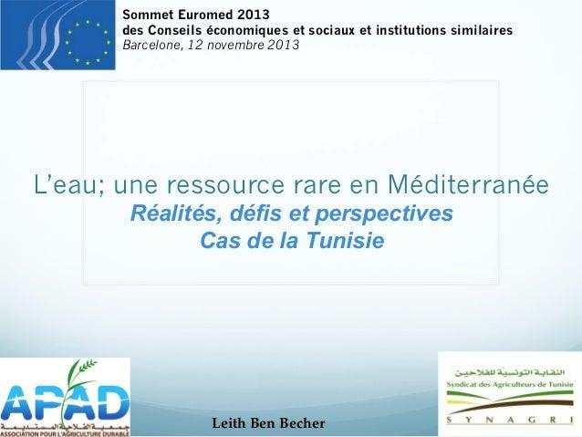 Sommet Euromed 2013 des Conseils économiques et sociaux et institutions similaires Barcelone, 12 novembre 2013  L'eau; une...