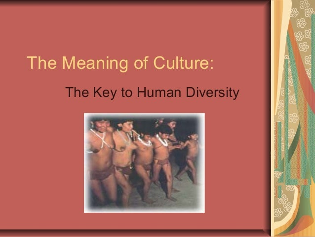 The Meaning of Culture: The Key to Human Diversity