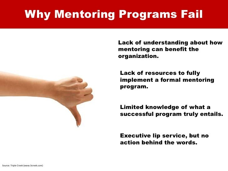 the mentor mentee relationship