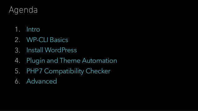 The Themer's Guide to WP-CLI Slide 2