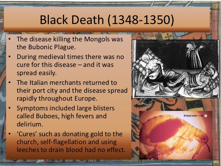 an overview of the bubonic plague of europe The black death was the outbreak of the bubonic plague that struck europe and the mediterranean area between 1347 and 1351 this plague was the most severe plague that hit the earth because of its origin (the spread), the symptoms, and the effects of the plague.