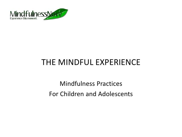 THE MINDFUL EXPERIENCE<br />Mindfulness Practices <br />For Children and Adolescents<br />