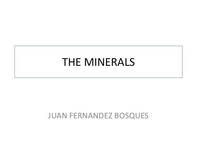 THE MINERALS  JUAN FERNANDEZ BOSQUES