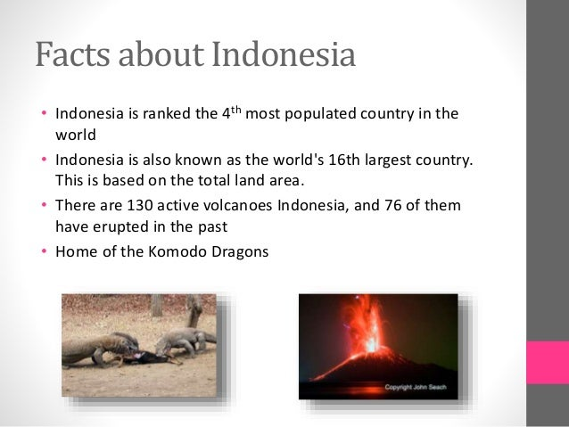 The modern and traditional indonesia