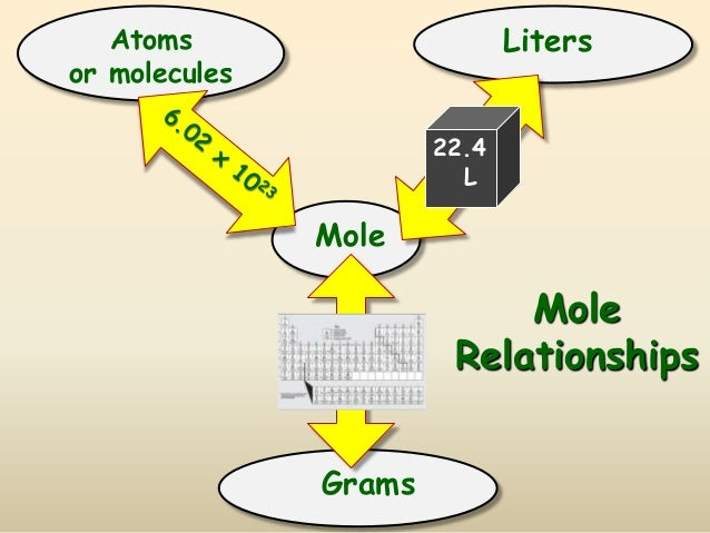 Image result for mole relationships