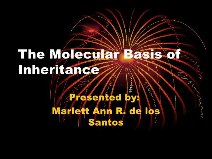 The molecular basis of inheritance