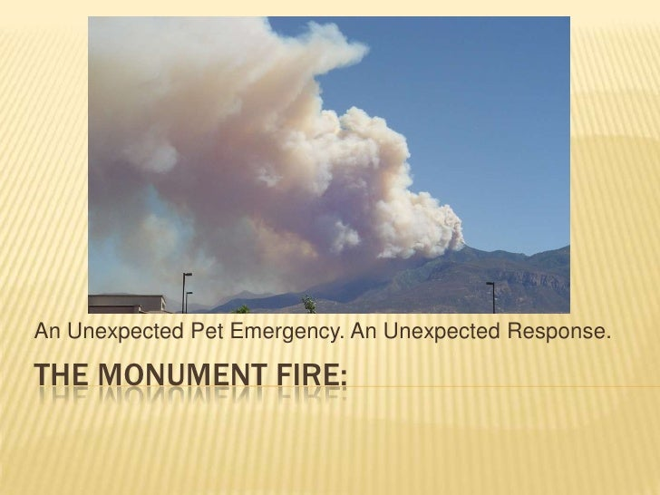 An Unexpected Pet Emergency. An Unexpected Response.THE MONUMENT FIRE:
