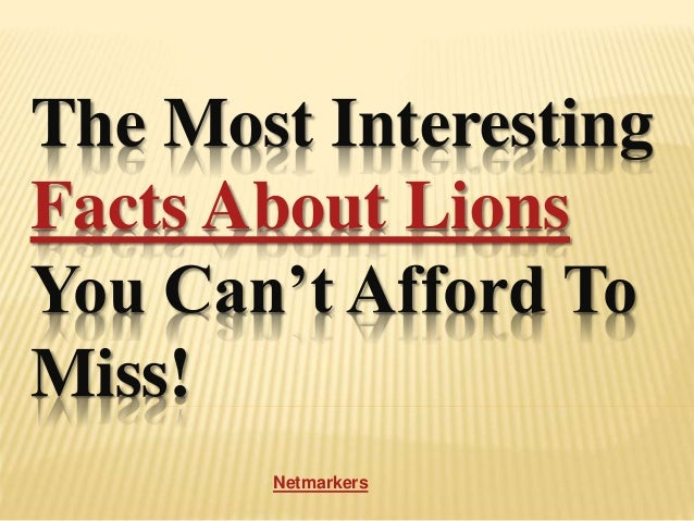 The Most Interesting Facts About Lions You Can't Afford To Miss! Netmarkers