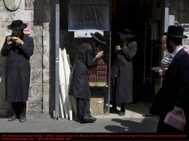 Ultra-Orthodox Jews inspect etrogs, or citrons, outside a shop in the Mea Shearim neighborhood in Jerusalem as they look t...