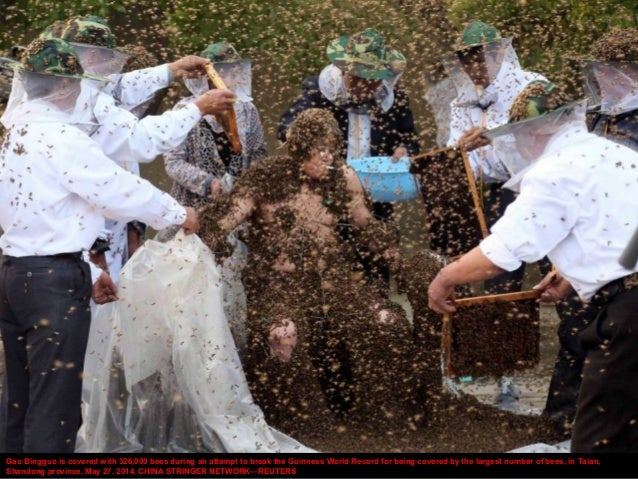 Gao Bingguo is covered with 326,000 bees during an attempt to break the Guinness World Record for being covered by the lar...