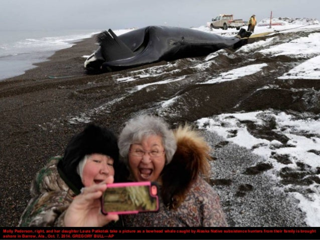 Molly Pederson, right, and her daughter Laura Patkotak take a picture as a bowhead whale caught by Alaska Native subsisten...