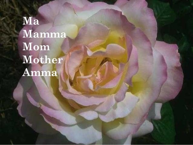 Ma Mamma Mom Mother Amma