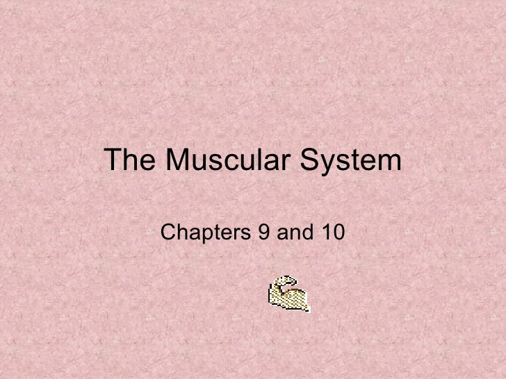 The Muscular System Chapters 9 and 10