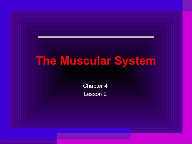 The Muscular System Chapter 4 Lesson 2