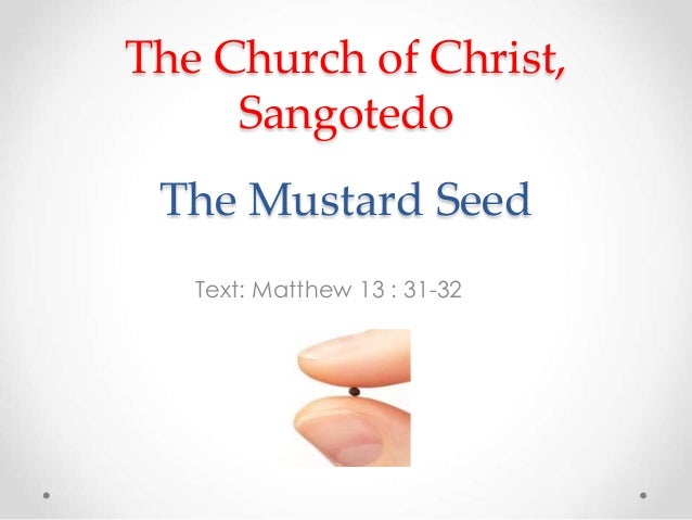 The Church of Christ,  Sangotedo  The Mustard Seed  Text: Matthew 13 : 31-32