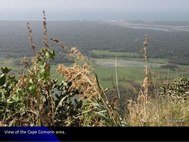View of the Cape Comorin area.