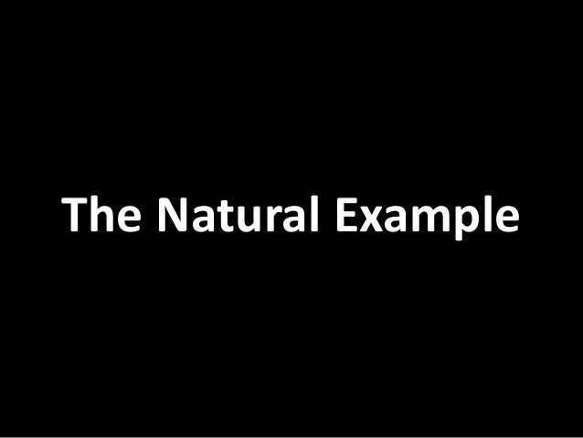 The  Natural  Example