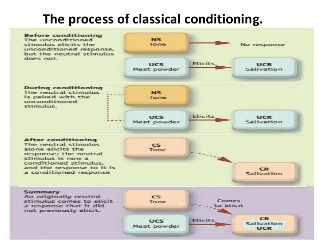 conditioning psychology