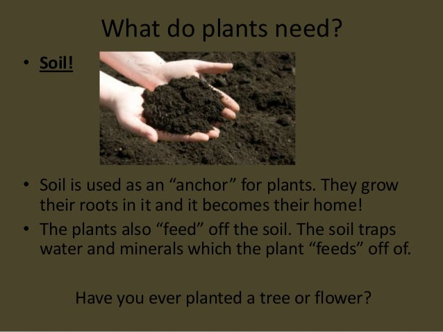 The needs of a plant for Three uses of soil