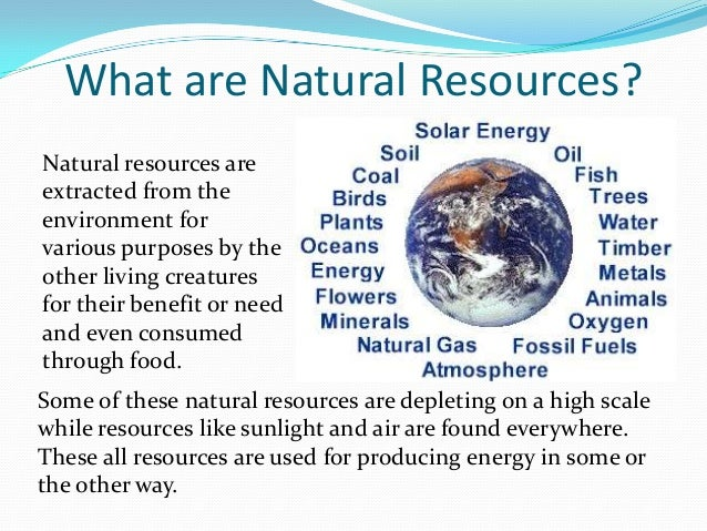 Types Of Natural Resources Found On Land