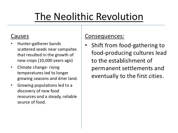 neolithic revolution essays The neolithic agricultural revolution is what we call the transition from nomadic life to settled farm life - neolithic agricultural revolution introduction it had a big impact on early people and their way of life and led to the rise of cities, which in turn lead to the development of civilization.