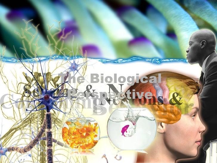 The Biological Perspective The Biological Perspective Nervous System Controlling Sensing & Behavior Neurons & The Biologic...