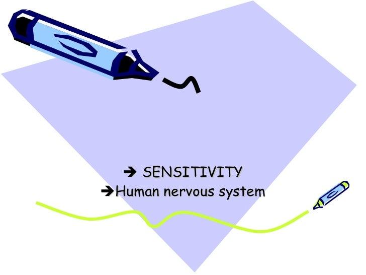  SENSITIVITYHuman nervous system