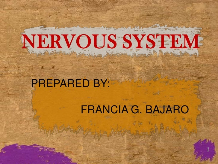NERVOUS SYSTEMPREPARED BY:       FRANCIA G. BAJARO                           1