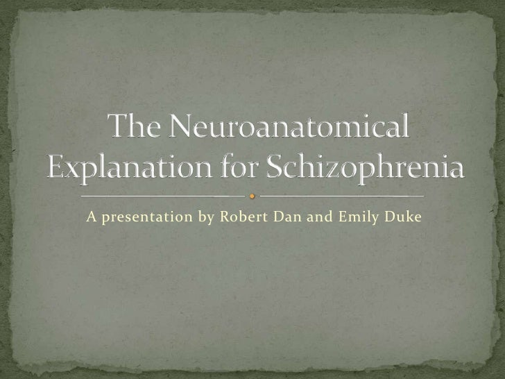 Schizophrenia : Important Theories of Schizophrenia | Abnormal Psychology