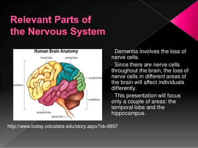 The neurobiology of dementia