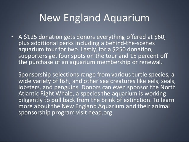 diversity programs and the new england aquarium The new england aquarium is a fun and engaging experience for your class, and can help reinforce classroom lessons with real, hands-on learning explore the aquarium as a group and dive into the diversity of marine habitats from around the world.