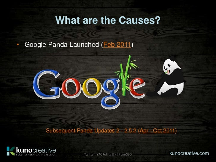 What are the Causes?• Google Panda Launched (Feb 2011)        Subsequent Panda Updates 2 - 2.5.2 (Apr - Oct 2011)         ...