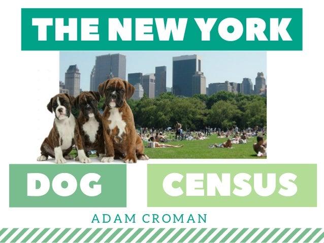 THENEWYORK DOG CENSUS ADAM CROMAN