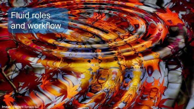 Image: Bernard Spragg NZ Fluid roles and workflow