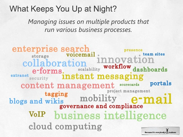 What Keeps You Up at Night?<br />Managing issues on multiple products that run various business processes.<br />enterprise...