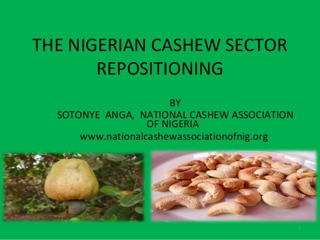 THE NIGERIAN CASHEW SECTOR       REPOSITIONING                       BY  SOTONYE ANGA, NATIONAL CASHEW ASSOCIATION        ...