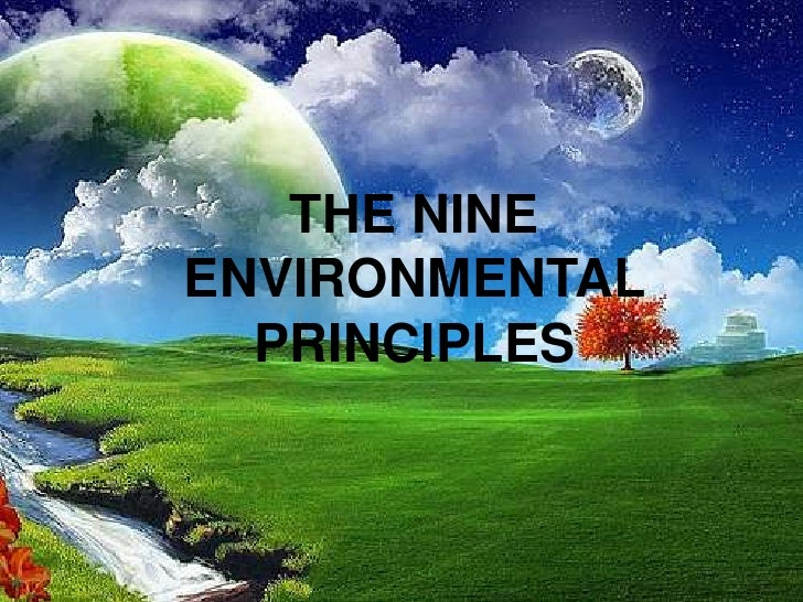 THE NINEENVIRONMENTAL  PRINCIPLES