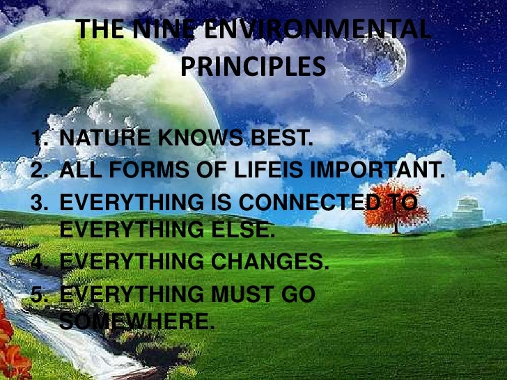What does an environmental engineer do?
