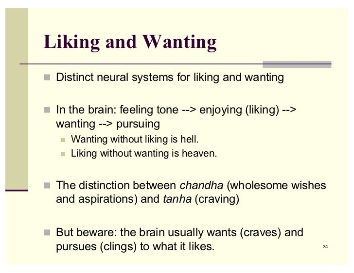 stages of liking someone