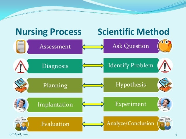 essay 5 steps to the scientific method