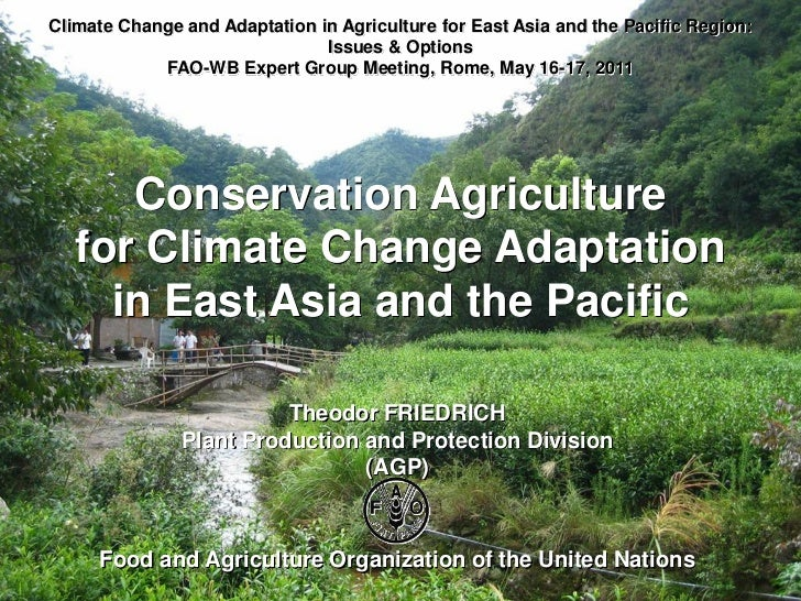 Climate Change and Adaptation in Agriculture for East Asia and the Pacific Region:                               Issues & ...