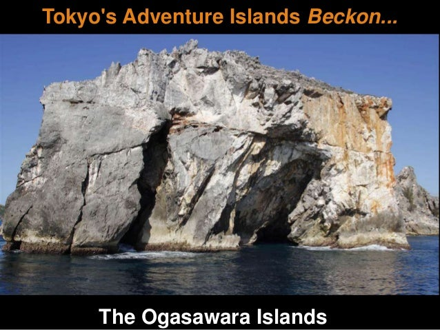Tokyo's Adventure Islands Beckon... The Ogasawara Islands